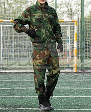 Ворота Jieitai Kanochi nite Каку Татакаэри Гейт Таким образом, JSDF воевал там Rory Mercury Cosplay Costume
