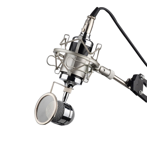 2019 3.5mm Professional Sound Studio Recording Condensor Microphone Network Singing Podcast Mic Plug Stand Holder Filter KTV Mic