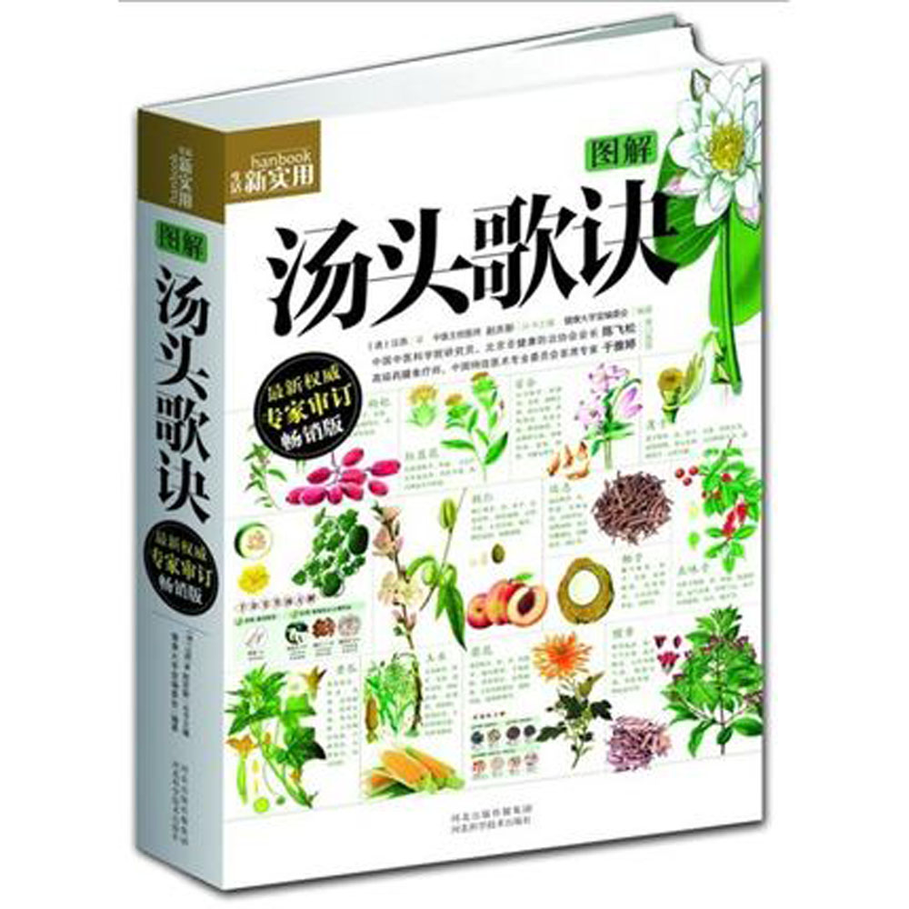 Chinese daily practical medicine book : Tangtou Gejue, Recipes in Rhymes with pictures explained Chinese healing book