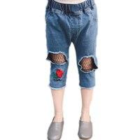 Дети вышивка цветочные джинсы летом девушка сетки отверстие джинсы Корейский детские чистой пряжи рыболовные сети брюки семь пять джинсов...