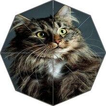 Хороший мультфильм котенок кошка зонтик пользовательские солнечный и дождливый зонтик дизайн Портативный Мода Стильный Полезная Зонты хороший подарок