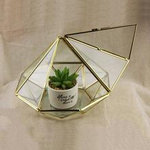 Modern Glass Geometric Terrarium Diamond Tabletop Succulent Fern Moss Plant Terrarium Box Bonsai Flower Pot