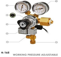 110V 240V Aquarium Fish Tank CO2 Regulator Adjustable Pressure Solenoid Magnetic Valve Marine And Planted CO2
