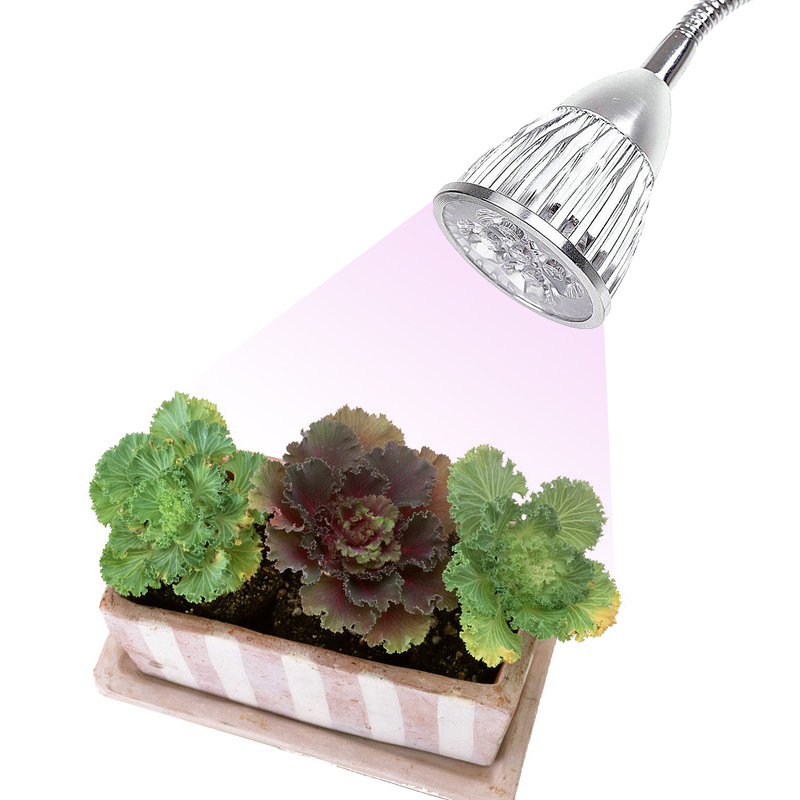 LED Grow Light with hose and clip for Succulent Flower Plant No flicker plant Lamp hydro ...