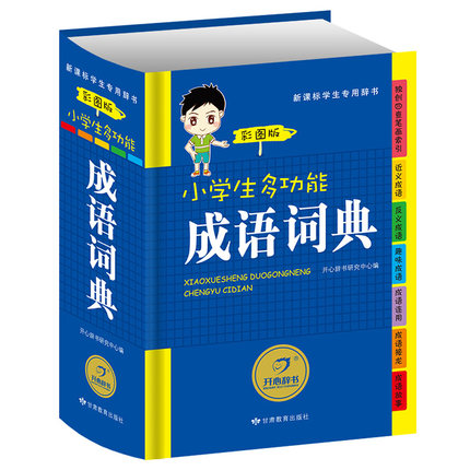 Chinese Idiom Dictionary Chinese Characters Dictionary Learning Language Tool Books