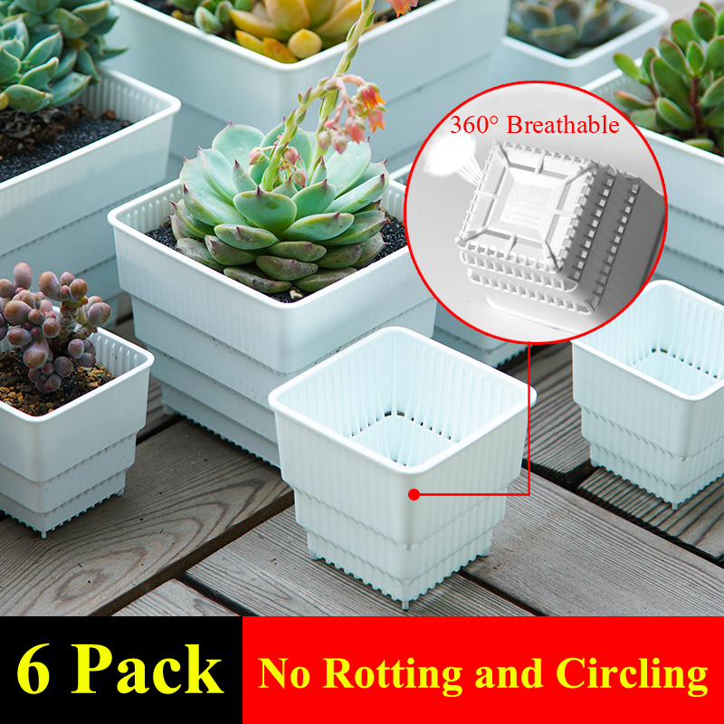 MESHPOT 6-Pack Plastic Square Succulent Planter Pot/Cactus Plant Pot With Drainage Holes Home Decor