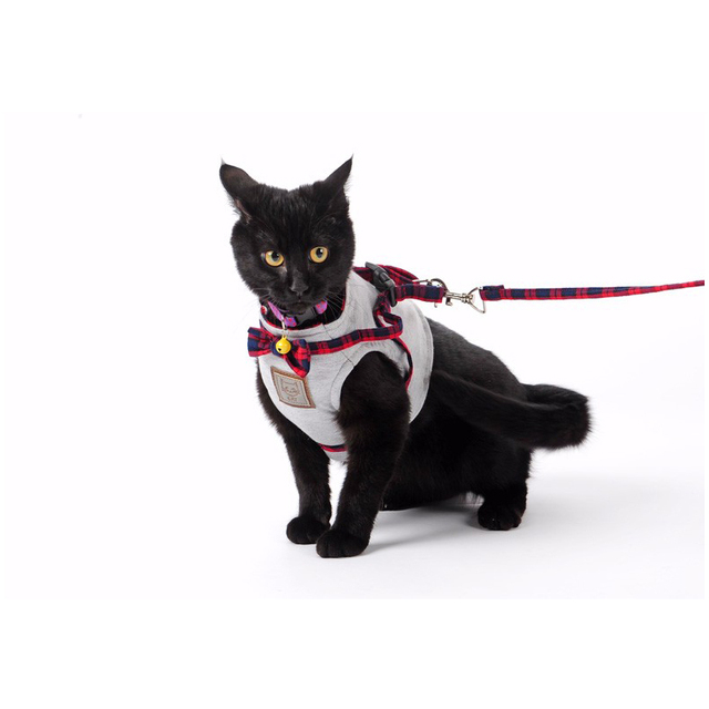 Cat's Gentleman Style Harness and Leash Set