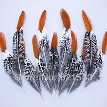 50Pcs/Lot 4-6  10-15CM Pheasant Feathers, Lady Amherst Feather, Orange Red Tipped,Wholesale lot.