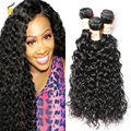 Brazilian Virgin Hair Water Wave 4 Pcs Brazilian Water Wave Curly Virgin Hair Human Hair Weave 7A Brazilian Hair Weave Bundles