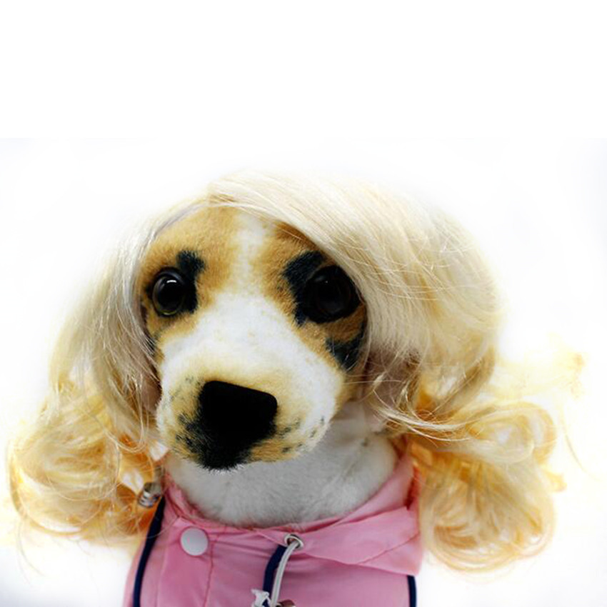 Unique And Soft Synthetic Hair Blonde Dog Short Curly Wig Cap For Pet Dog Cat hatsune miku winter plush doll