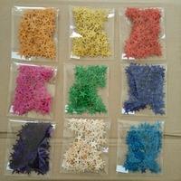 sea star 20pcs/lot Natural Starfish Shells Mini Crafts 10mm-25mm Tablet Micro Landscape Nautical Decoration 9 Colors