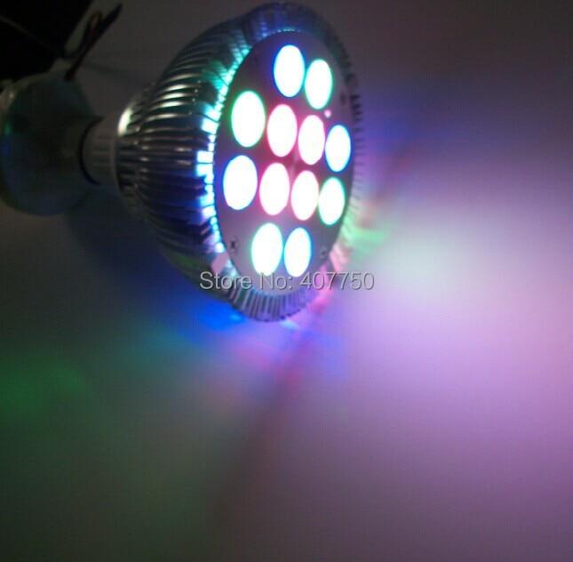 անվճար առաքում Եվրոպա հեռակառավարիչ - LED լուսավորություն - Լուսանկար 1