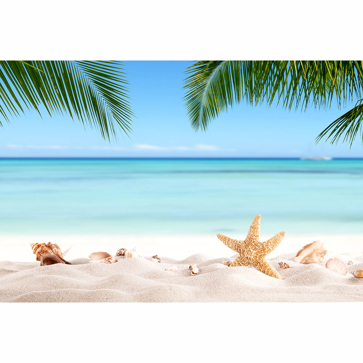 allenjoy backgrounds for photography studio summer sandy beach with