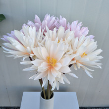 simulation rare Cactus Flower artificial plants Japanese Epiphyllum Succulents  Bonsai Indoor decorative display silk