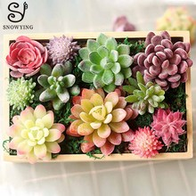 mini Artificial Succulent Plant DIY Micro Landscape Material Looks Real Plastic Fake Plants Flower for Hotel