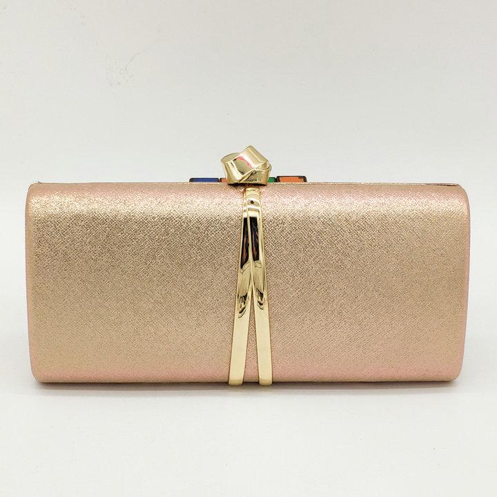 Champagne Clutch Bag