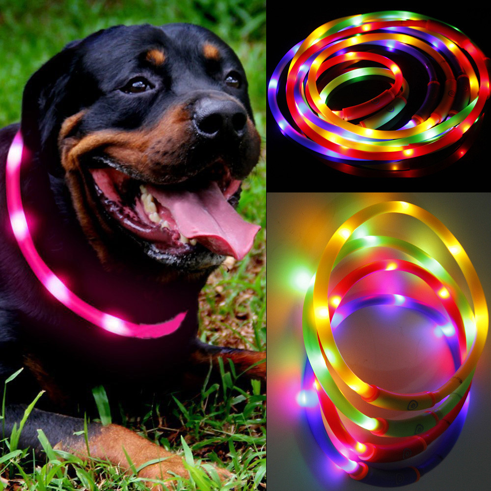 Dog Collar Led Light Waterproof Usb Rechargeable Pet Collar Led Flashing Glowing Light Dog Cat Safety  For Dogs Puppy Pet