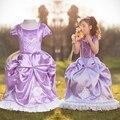 Хэллоуин Christma новый год костюмы для детей лихорадка эльза платье принцессы Vestido платье Deguisement для Disfraces карнавал