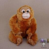 Stuffed Toy Orangutan Doll Real life Monkey Plush Toys Rare Wildlife Birthday Gifts
