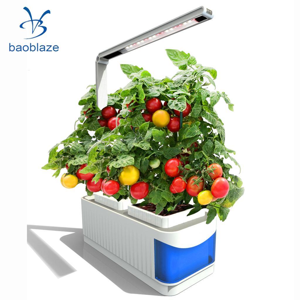 Indoor Smart Herb Garden Kit, 20 LED Grow Light Hydroponic Growing, Multifunction Desk Lamp (US Plug)