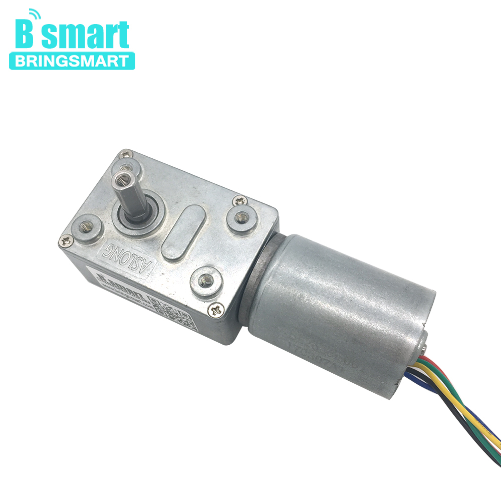 Bringsmart JGY-2838 DC Worm Gear Motor 12V 24V High Torque Brushless Reversed Self-lock Turbo-reducing Built-in Driver GearboxBringsmart JGY-2838 DC Worm Gear Motor 12V 24V High Torque Brushless Reversed Self-lock Turbo-reducing Built-in Driver Gearbox