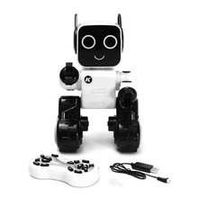 Cute RC Robots With Piggy Banks