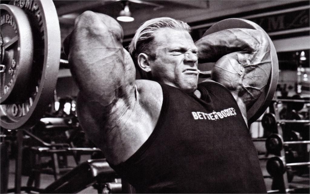 Sports Bodybuilding Hd 2014 Dennis wolf bodybuilding living room home wall art decor wood frame fabric posters