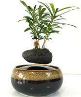 levitation air bonsai (no plant) ceramic flower small tree garden pots planters culture free shipping