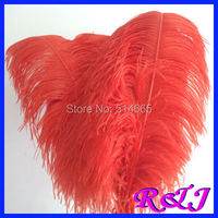 Wholesale 100PCS 60-65cm 24-26inch Red OSTRICH FEATHER real ostrich plumage ostrich plumes EMS Free Shipping