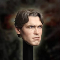 New 1/6 Scale T800 Arnold schwarzenegger Head Sculpt For Hot Toys Body action figure