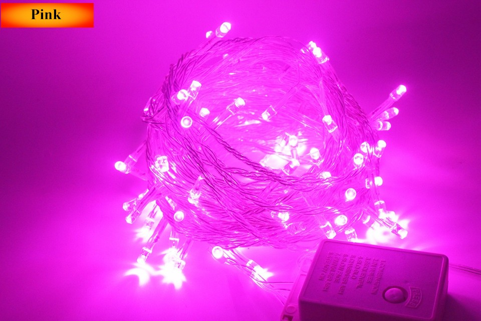 Lighting Strings wedding christmas lights led strings 10m AC220V 110V Led Strip Light Garden Garland (24)