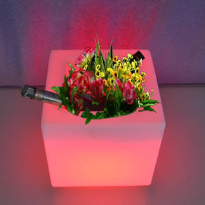 Flower-Pot Illuminated-Light Changeable Indoor Led 10pcs of Remote-Control Skybess Colorful