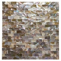 Peel and Stick Mother of Pearl Shell Mosaic Tile for Kitchen Backsplashes, 12 x 12 Coloful Taxtures with 6 Tablets