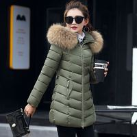New 2017 Winter Jacket Women Coats Artificial Raccoon Hair Collar Female Parka Black Thick Cotton Padded