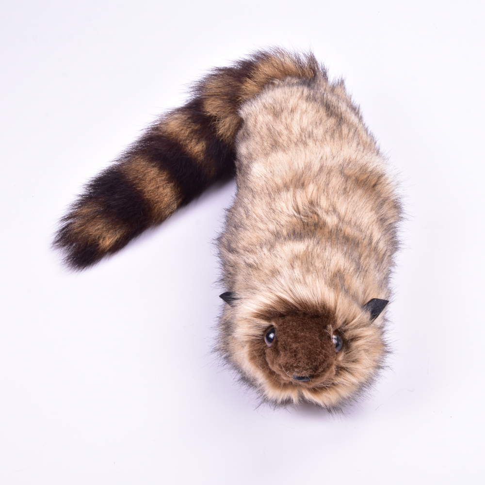 The Rocky Raccoon Robbie Magic Tricks Funny Stage Street Magia  Illusion Gimmick Props Appearing Animal Magie Toys For Adult