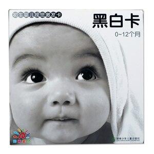 Image 3 - 21 × 21センチメートル黒と白のカードのための教育の視覚トレーニングカード動物カード送料無料
