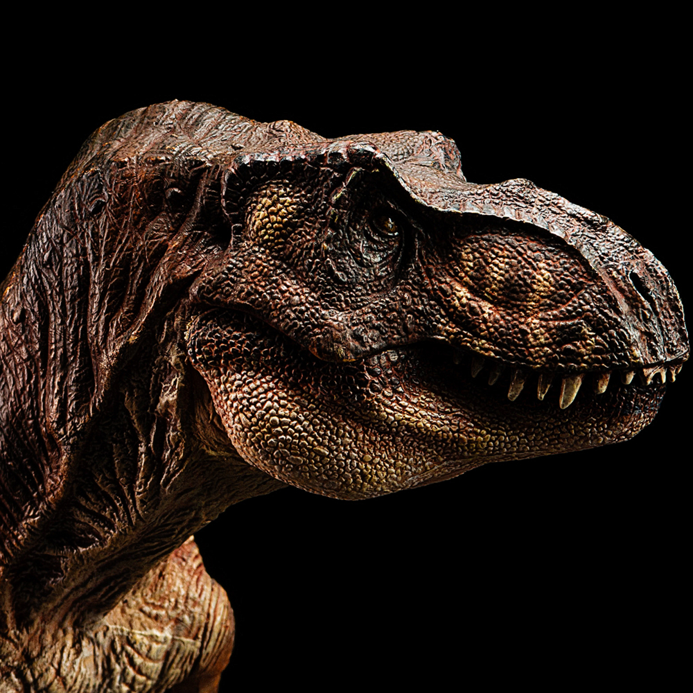 2018 Jurassic World Dinosaur model Ancient biological Adult Collection toys Rex Tyrannosaurus wiben jurassic tyrannosaurus rex t rex dinosaur toys action figure animal model collection learning