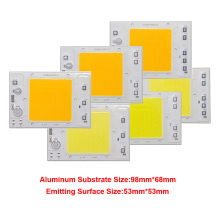 10PCS/LOT LED COB Chip 30W 40W 50W 220V 110V Anti Surge design Smart IC Light High Lumen For DIY Floodlight Bead