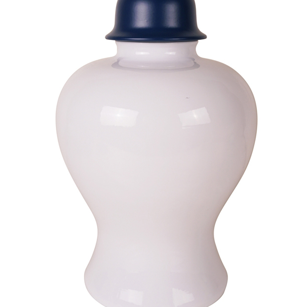 Fascinating Ceramic Covered Jar, White And Blue