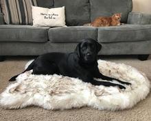 Tyteps פו פרווה אורטופדי כלב מיטת Curve לבן כלב שטיח גדול בינוני קטן גורות תמיכה השמטת משלוח