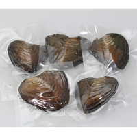 New High quality 6 7MM Rice Pearl Oyster, 30pcs Freshwater Oysters Vacuum Packing, Mix 20 Colors Free Shipping PJW293