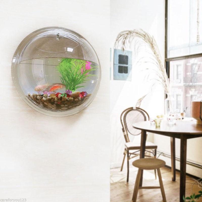 Semicircular and Wall Hanging Terrarium Vase for Growing Hydroponic Plants and Flower Indoor 3