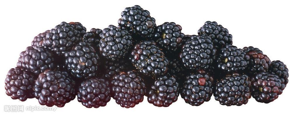 Большая Акция! 200 шт. Фамильные сладкий Blackberry бонсай вкусные Black Berry гигантские ежевика Тройной Короны Blackberry Черный Mul