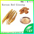 Factory Supply Korean Red Ginseng Root P.E 500g/lot