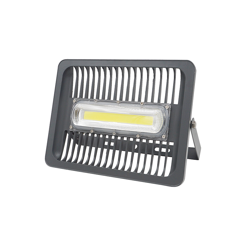 LED Flood Light 30W 50W 100W IP65 WaterProof AC 220V 110V Smart IC COB Spotlight Outdoor Wall Lamp Cold White Warm White охлаждение для компьютера cooltex 95x95x30mm 30w 100w 95x95x30 white