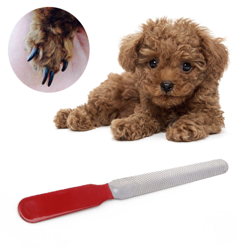 1pc Pet Grooming Dog Cat Stainless Steel Nail Toe Manicure File