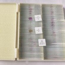 100 pces educação profissional estudo médico animal histologia slides microscópio preparado slides