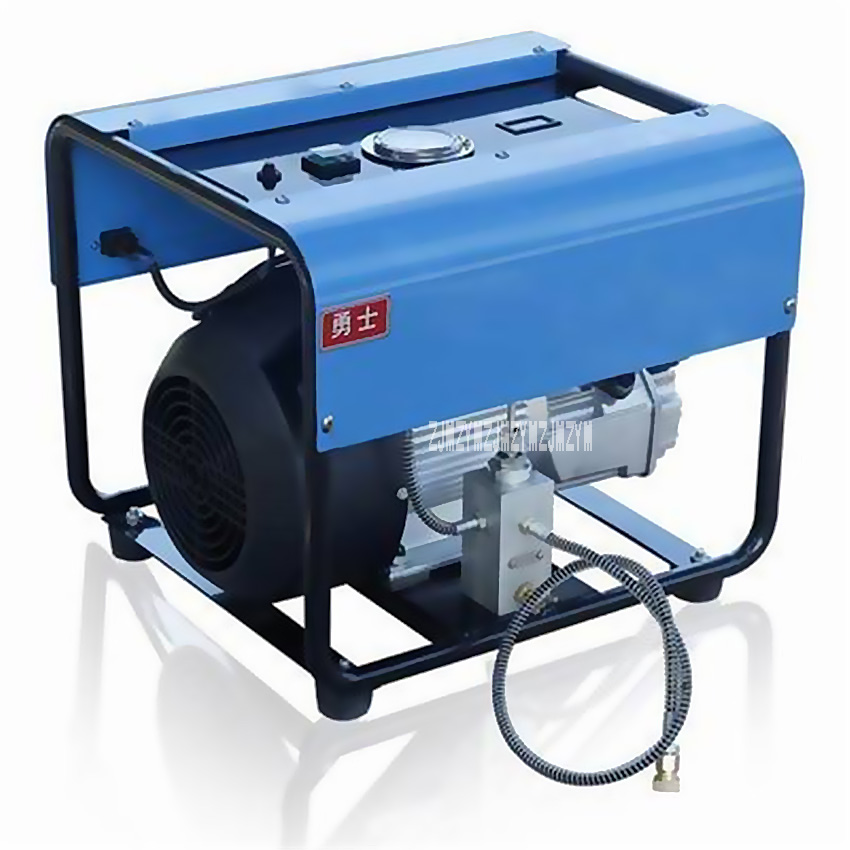 Economic Stainless Steel Electric Pump Double Cylinder 30Mpa Electric High Pressure Pump 220V 2.2KW 0.5L 0-20 Pressure Hot Sale