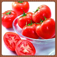 2016 hot-sale!!Factory direct sale,fresh food,delicious and juicy,tomato seed,have two kinds of size,200pcs a bag free shipping,