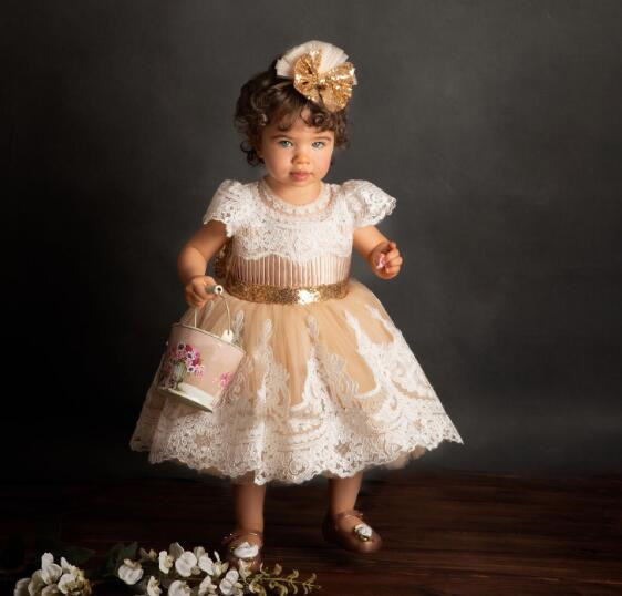 Elegant champagne tulle puffy toddler flower girl dresses baby infant lace appliques birthday party gown with sequin bow sashElegant champagne tulle puffy toddler flower girl dresses baby infant lace appliques birthday party gown with sequin bow sash